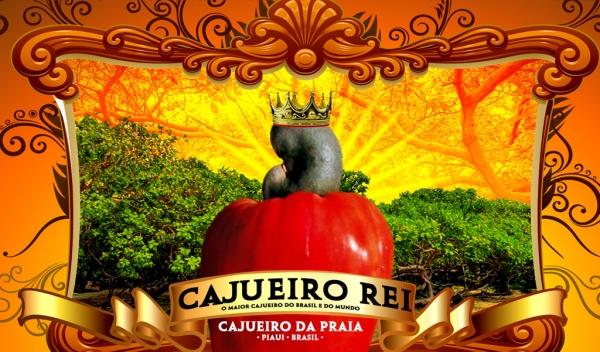 Marca criada pelo publicitário Alcide Filho em homenagem ao Cajueiro Rei do litoral do Piauí.  (Crédito: Design: Marden Aires)