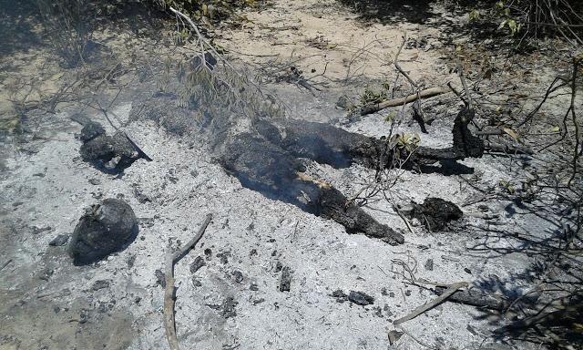 População mata, decepa cabeça e ateia fogo no corpo de assassino de jovem em Tutóia - MA (Crédito: Reprodução/ blog do Neto Pimentel)